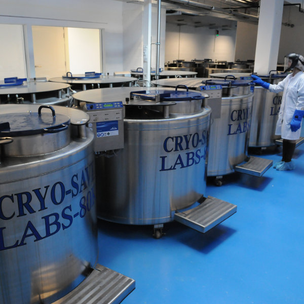 Cryosave lab 2